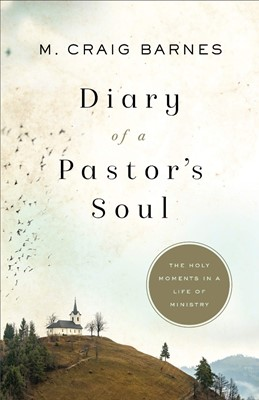 Diary of a Pastor's Soul (Paperback)