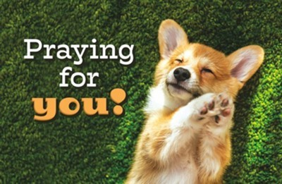 Praying for you! Postcard (pack of 25) (Postcard)