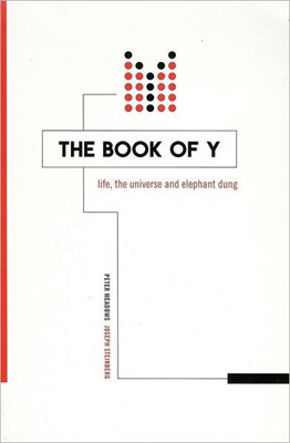 The Book of Y (Paperback)