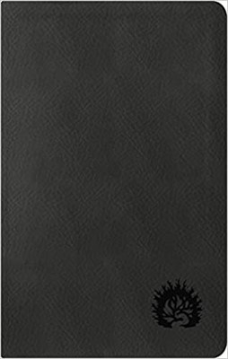ESV Reformation Study Bible, Condensed Ed., Charcoal (Imitation Leather)