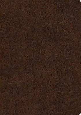 NASB 2020 Large Print Ultrathin Reference Bible, Brown (Imitation Leather)