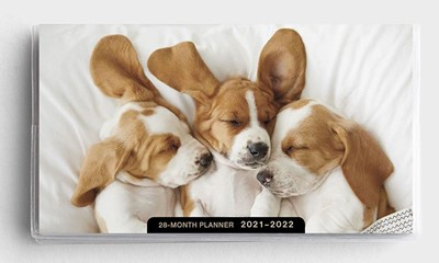 2021 28-Month Planner: Puppies (Paperback)