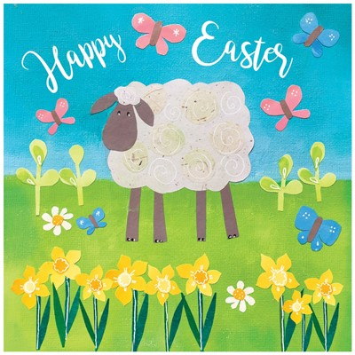 Easter Sheep Cards (pack of 5) (Cards)