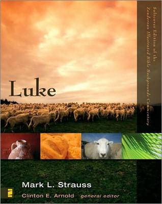 Luke (Paperback)