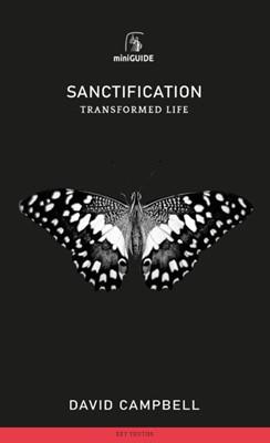 Sanctification (Paperback)