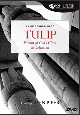 Tulip DVD (DVD)