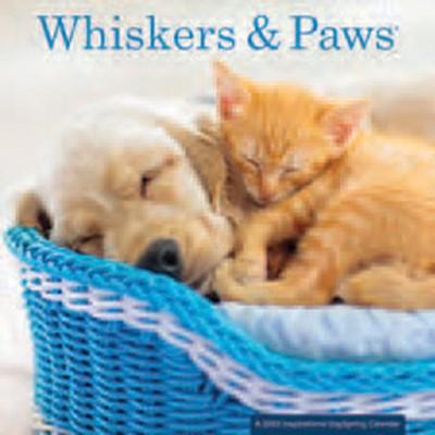 2022 Calendar: Whiskers & Paws (Calendar)