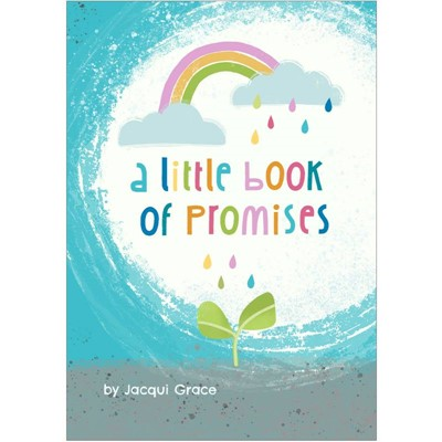 Little Book of Promises (Paperback)