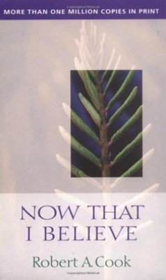 Now That I Believe (Paperback)