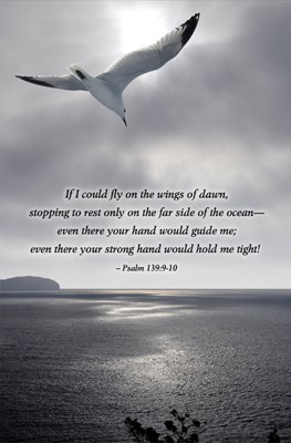 Seagull Scripture Series Bulletin (Pkg of 50) (Loose-leaf)
