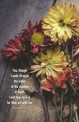 I Walk Through the Valley Funeral Bulletin (Pkg of 50) (Loose-leaf)