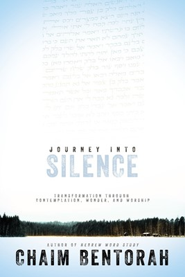 Journey Into Silence (Paperback)
