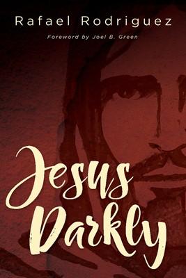 Jesus Darkly (Paperback)