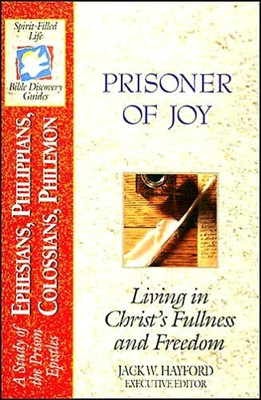 Prisoner Of Joy (Paperback)