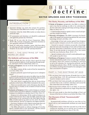 Bible Doctrine Laminated Sheet (Other Book Format)
