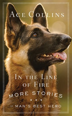In the Line of Fire (Paperback)