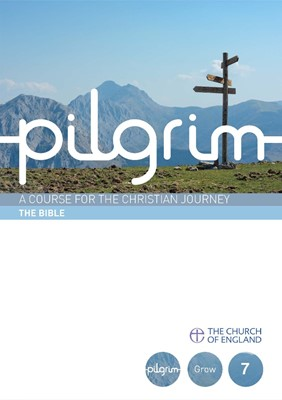 The Pilgrim Bk7: Bible (Paperback)