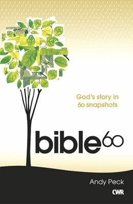 Bible 60: The Whole Story (Paperback)