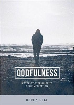 Godfulness (Paperback)