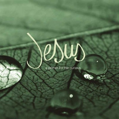 Jesus - A Primer For The Curious (Paperback)