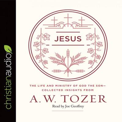 Jesus Audio Book (CD-Audio)