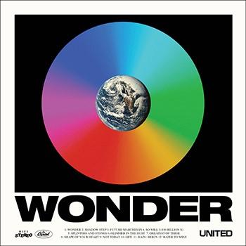 Wonder Vinyl (Vinyl)