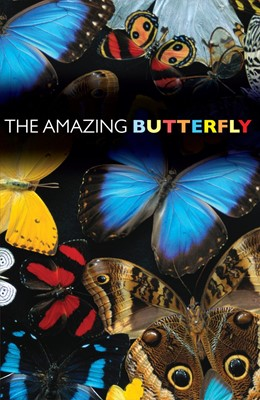 The Amazing Butterfly (Pack Of 25) (Tracts)