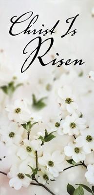 Christ Is Risen Dogwood Easter Offering Envelope (Pkg of 50) (Loose-leaf)