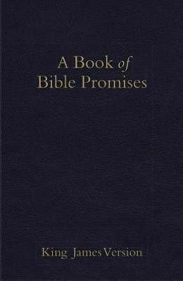 KJV Book Of Bible Promises, Midnight Blue Imitation Leather (Leather Binding)