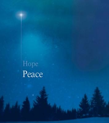 Peace Star Advent Bulletin Large (Pack of 50) (Bulletin)