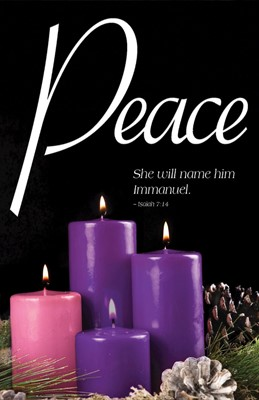 Peace Advent Candle Sunday 4 Bulletin (Pkg of 50) (Bulletin)