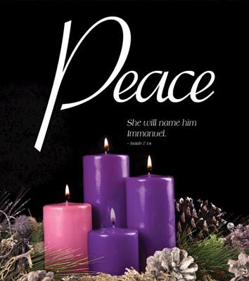Peace Advent Candle Sunday 4 Bulletin, Large (Pkg of 50) (Bulletin)