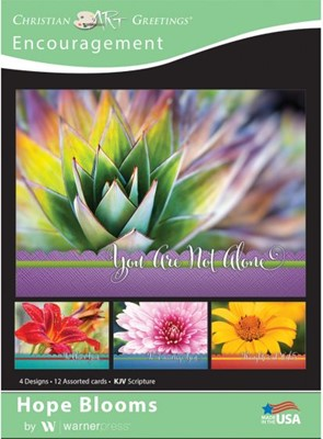 Boxed Card Encouragement - Hope Blooms (pack of 12) (Cards)