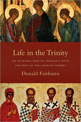 Life In The Trinity (Paperback)
