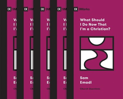 What Should I Do Now That I'm a Christian? (5-pack) (Multiple Copy Pack)
