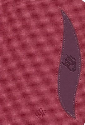 ESV Fire Bible Student Edition, Red (Imitation Leather)