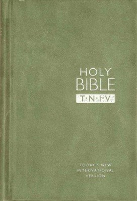 TNIV Personal Bible Suedel/Sage (Hard Cover)