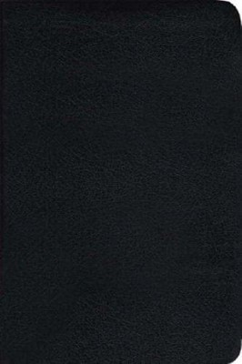 TNIV Popular Bible with Guide Black (Leather Binding)