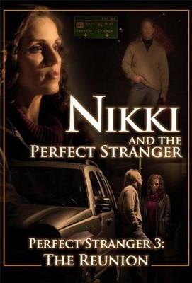 Nikki and the Perfect Stranger DVD (DVD)