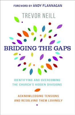 Bridging the Gap (Paperback)