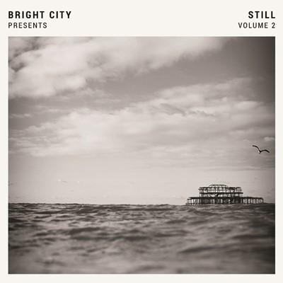 Still Volume 2 Vinyl (Vinyl)