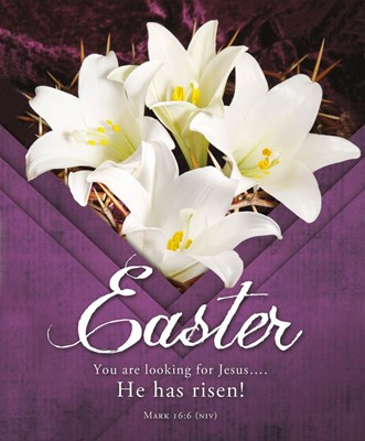 You are Looking for Jesus Easter Bulletin Lgl (pack of 100) (Bulletin)