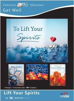 Boxed Cards - Life Your Spirits Get Well (pack of 12) (Cards)