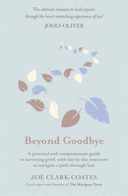 Beyond Goodbye (Hard Cover)