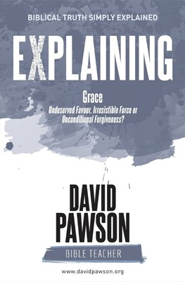 Explaing Grace (Paperback)