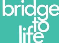 Bridge to Life (pack of 25)