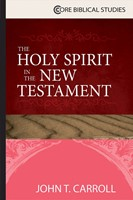 The Holy Spirit in the New Testament (Paperback)