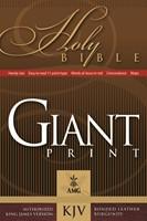 KJV Giant Print Handy-Size Reference Bible
