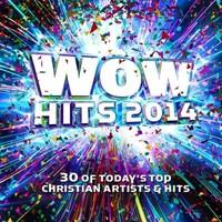 Wow Hits 2014 CD
